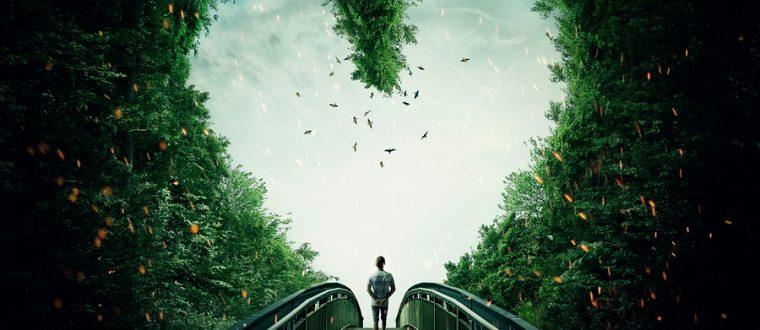 מה שמואר- צומח! | פסיכולוגית עונה